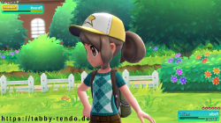 Tabby Tendo in pokémon Let's Go Evoli